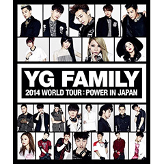 BIGBANG、2NE1、Epik High、LEE HI、WINNER、TEAM B「YG Family World Tour 2014 -POWER- in Japan」